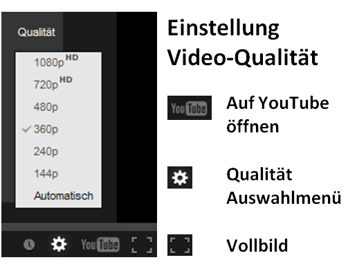 Video-Einstellung